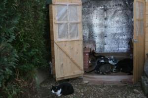 Maisons des chats