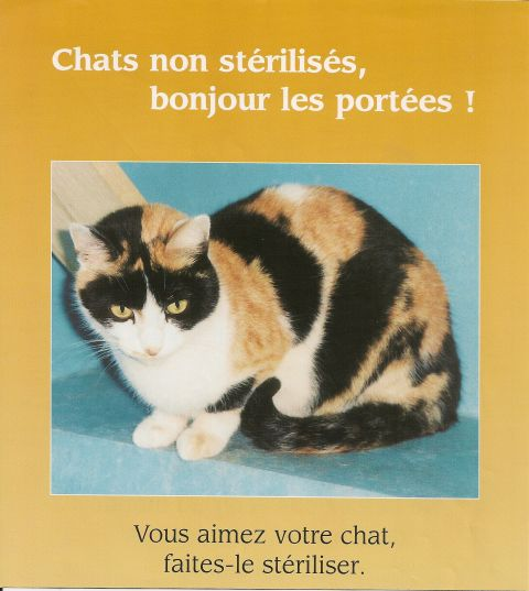 Editorial Charlotte Et Les Autres