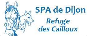 logo-spa-dijon-small
